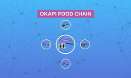 Okapi Food Web