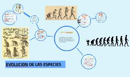 Copy of EVOLUCION DE LAS ESPECIES