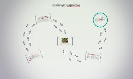 Los hongos saprobios
