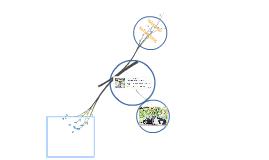 Voorstel presentatie Networking Gilde
