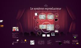 Copy of Système reproducteur