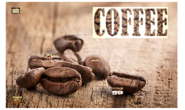 Copy of COFFEE ROASTING