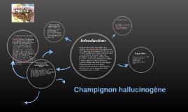 Champignon hallucinogène