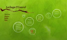 Lechuga Y Laurel