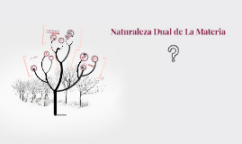 Copy of Naturaleza Dual de La Materia