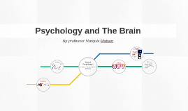 Psychology and The Brain