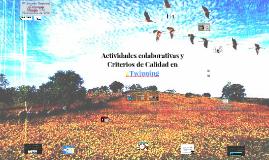 Actividades colaborativas y Criterios de Calidad en eTwinning