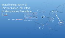 Copy of Biotechnology Bacterial Transformation Lab