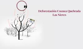 Deforestación Cuenca Quebrada Las Nieves