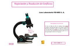Caso Laboratorio FER-MEX S. A.