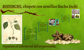 BIOINCHI, chupete con semillas Sacha Inchi