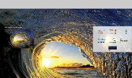 Surf - desporto / estilo de vida