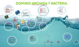DOMINIO ARCHAEA Y BACTERIA.