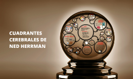 CUADRANTES CEREBRALES DE NED HERRMANN