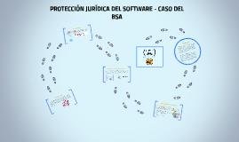 PROTECCION JURIDICA DEL SOFTWARE - CASO DEL BSA