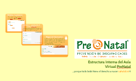Estructura Interna del Aula Virtual PreNatal