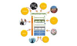 Organization v00