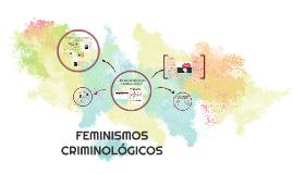 FEMINISMOS CRIMINOLÓGICOS