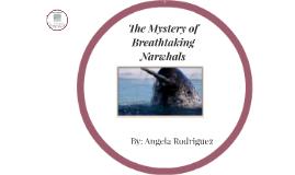 Breathtaking Narwhals