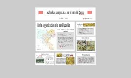 Las luchas campesinas en el sur del Cauca