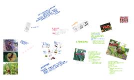 Copy of 고품질 복숭아 생산