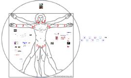 De kritieke patiënt: haemodynamische monitoring