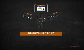 GESTIÓN DE CARTERA