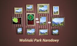 Copy of Woliński Park Narodowy