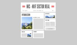 NIC - NIIF SECTOR REAL