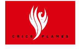 Flame is one part of a Fire