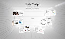 Social Budget 2013