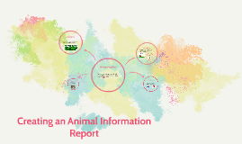 Creating an Information Report