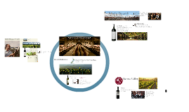 Top Wines of The New World