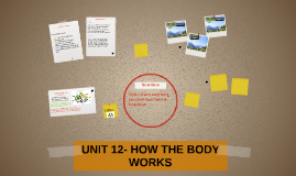 UNIT 12- HOW THE BODY WORKS