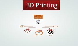 Amalia hotel 3d Printer Presentation