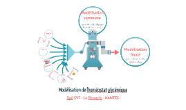 Modélisation initiale de l'homéostat glycémique 2017 2018 G1