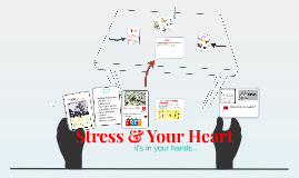 Copy of Copy of The effects stress has on the heart