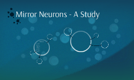 Mirror Neurons - A Study