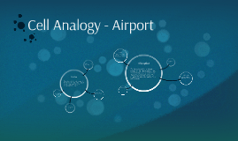 Cell Analogy Airport By Conor Kelly On Prezi