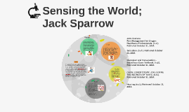 Sensing the World; Jack Sparrow