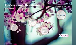 Professionele Profilering2