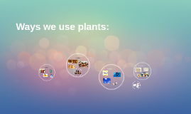 Ways we use plants: