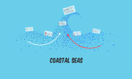 The Coastal Seas