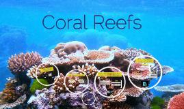 Coral Reefs: Mass bleaching, ocean accidification, mitigation