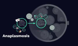Anaplasmamosis