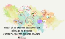 3P_CGJB_MCIBQ_Proyecto