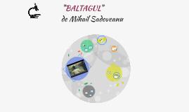 BALTAGUL- Mihail Sadoveanu