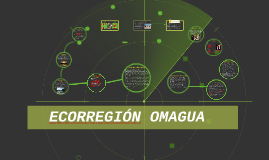 Copy of   ECORREGIÓN OMAGUA