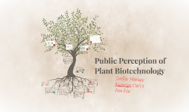 Public Perception of Plant Biotechnology