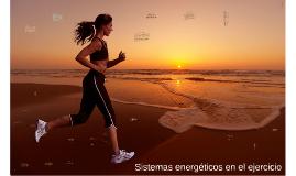 Sistemas energéticos en el ejercicio
